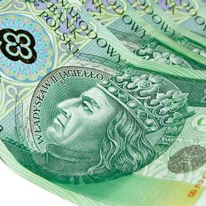 250 tysięcy złotych w gminie Gorzyce. Najwięcej dla Unii Turza Śląska i Czarnych Gorzyce