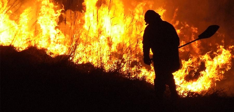 Strażacy ze wsparciem lotniczym gasili pożar lasów rudzkich