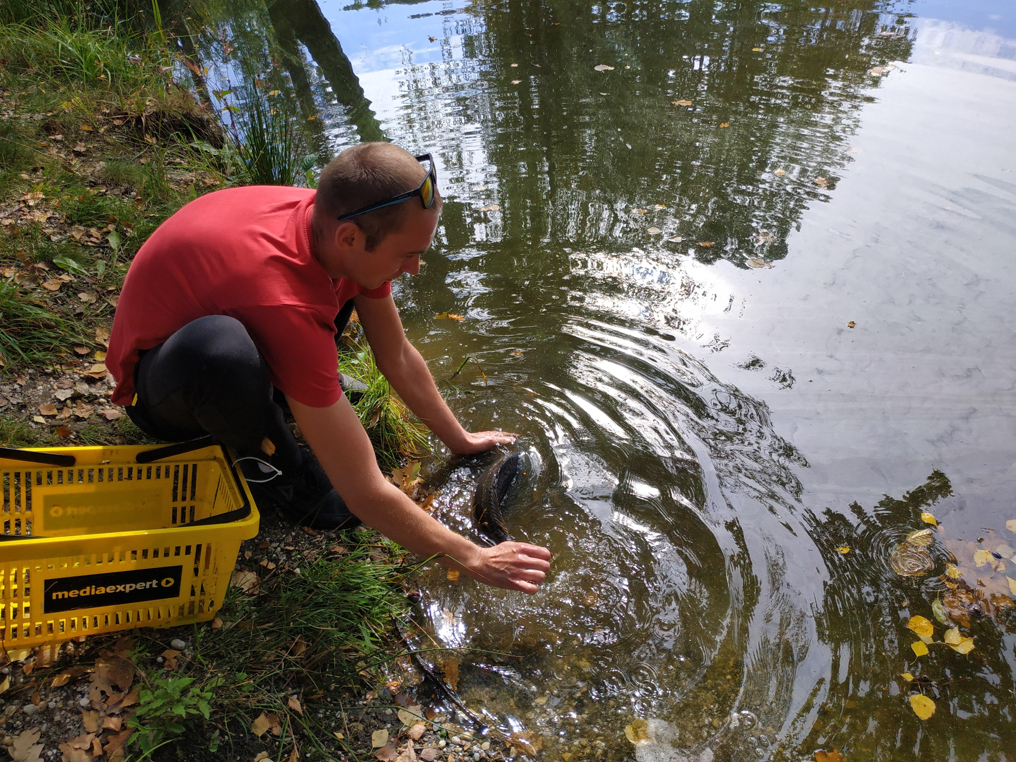Po zawodach ryby zostały wpuszczone z powrotem do wody.